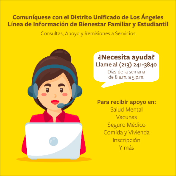 wellness flyer spanish