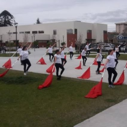 Winter Guard practicing
