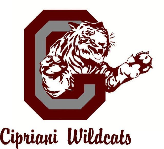 new wildcat logo 9-09