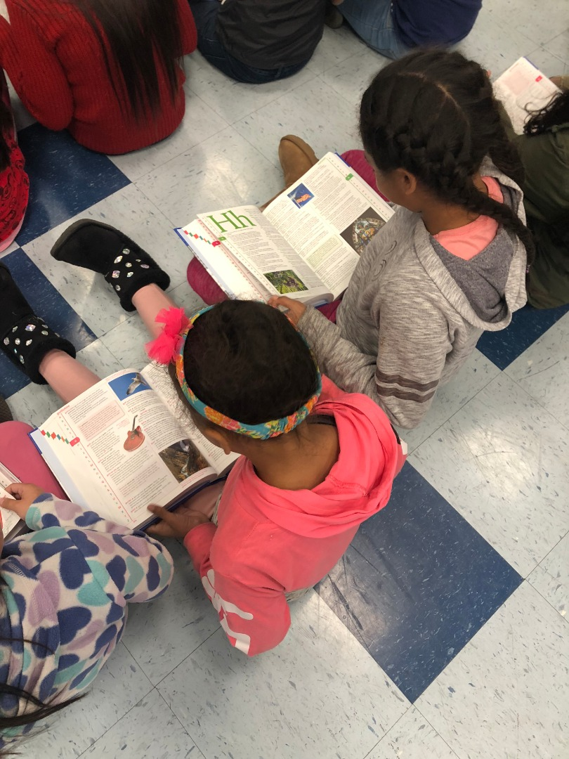Cooper 3rd Graders look for words in their new dictionaries