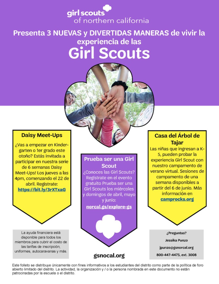 Girl Scout Graphic Spanish
