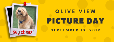 Olive View Picture Day