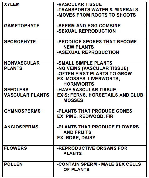 Plant Dictionary 3
