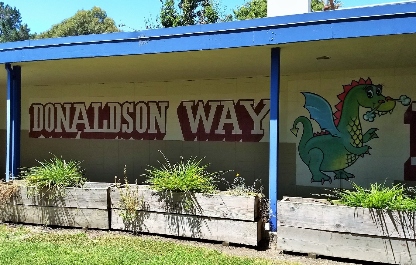 donaldson way dragons