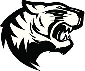 Go White Tigers!