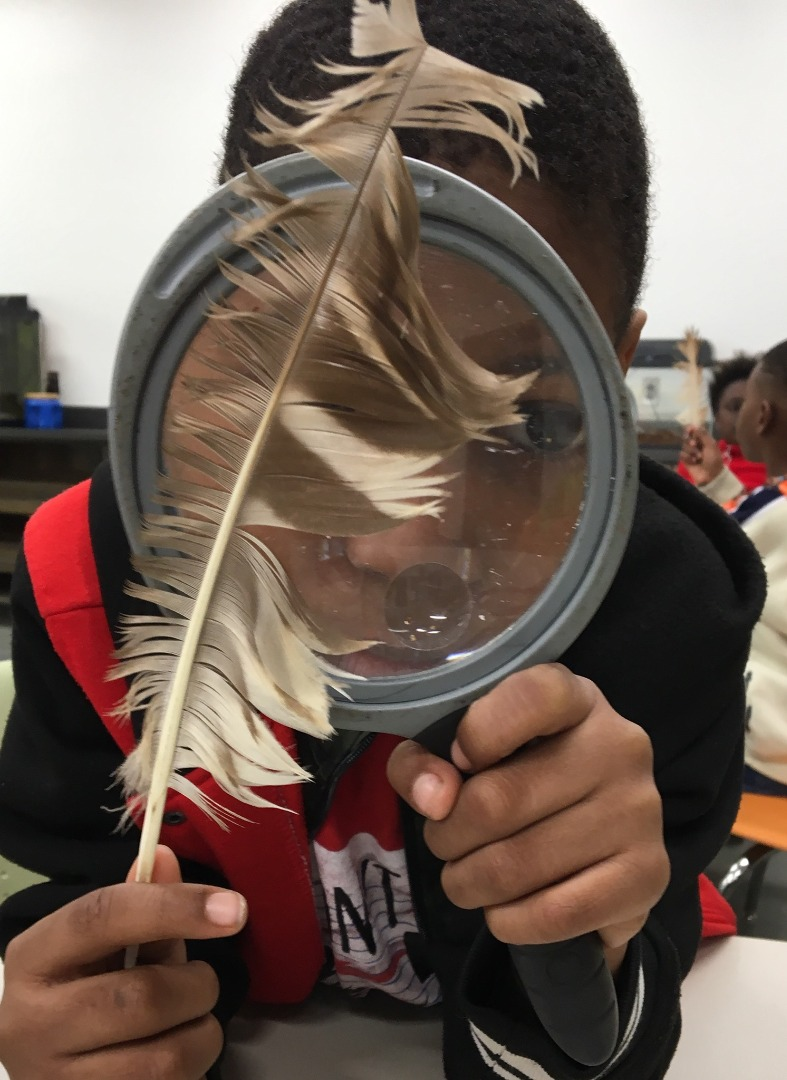 Student using magnifying lens