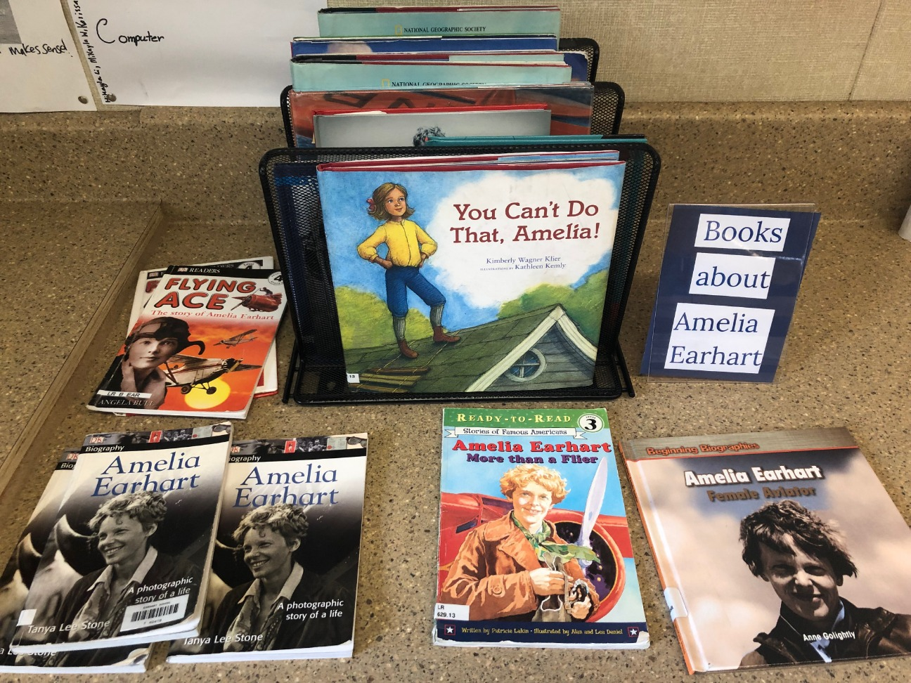 Books about Amelia Earhart