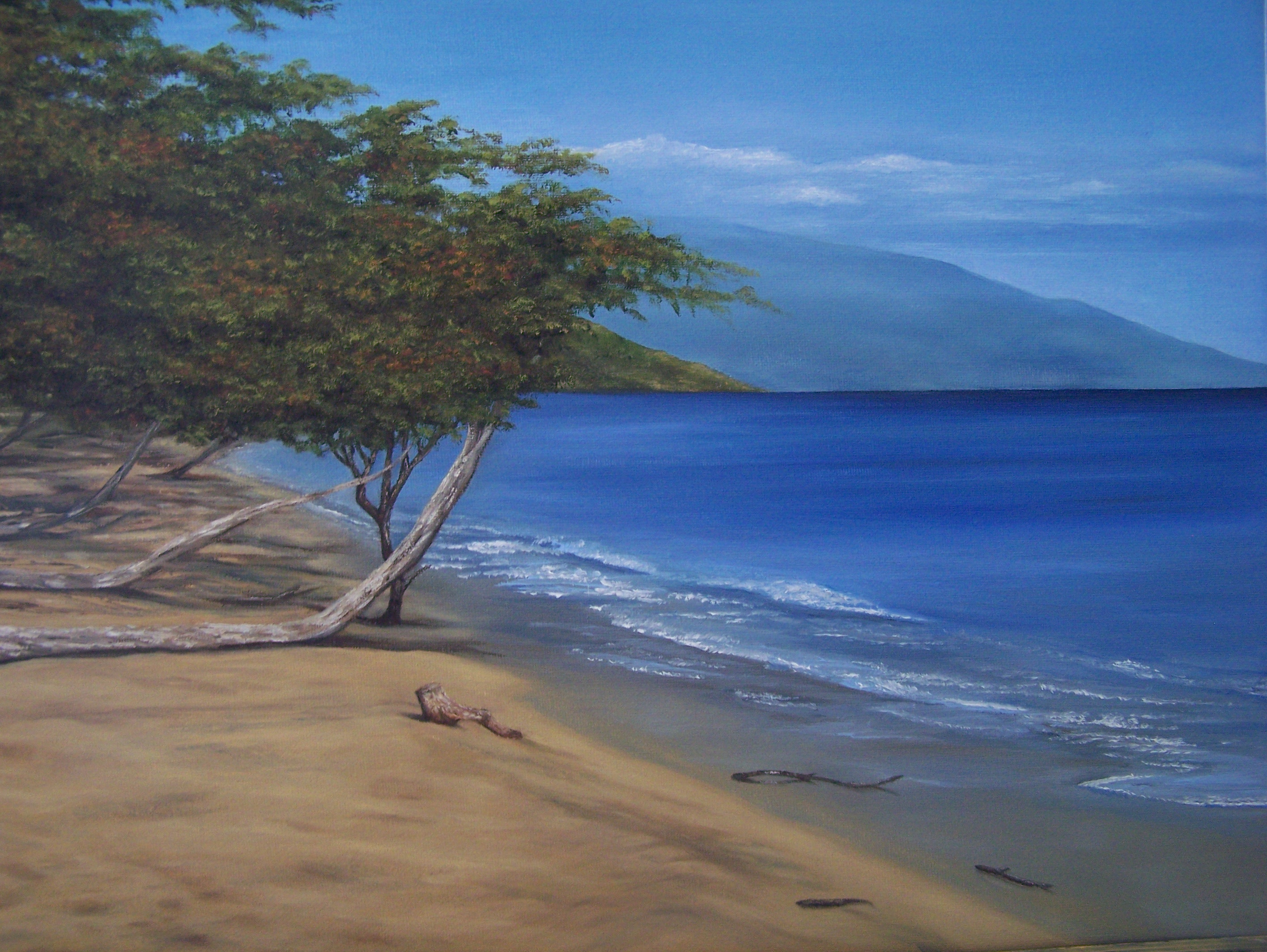 Oil Painting of Hawaii Beach by C. Otto