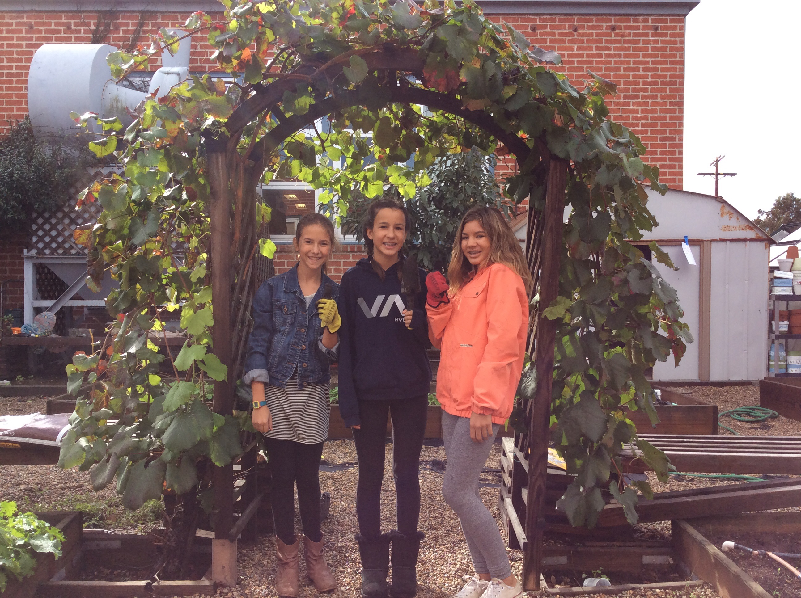 Students under an arch in the garden