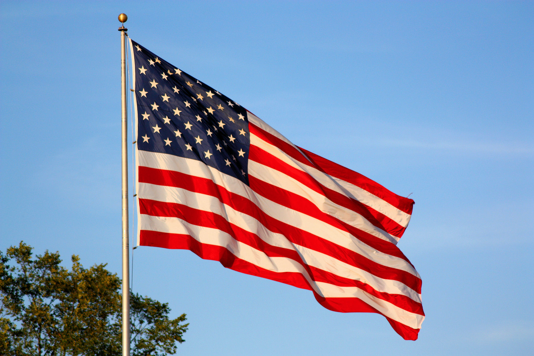 American-Flag-Flying.jpg
