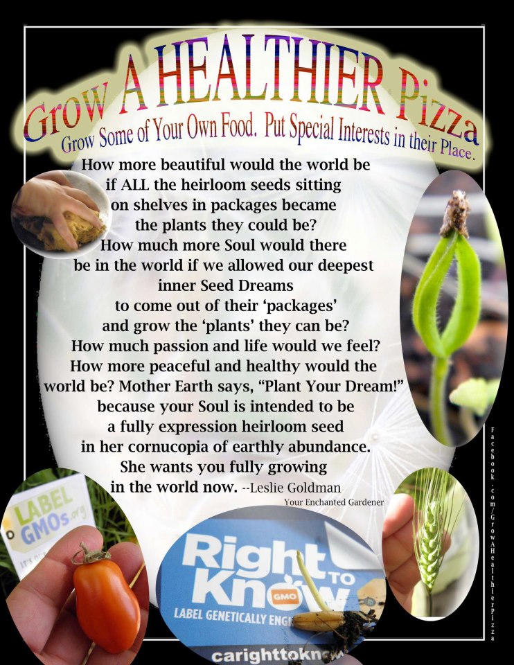 Campaign to Grow a Healthier Pizza