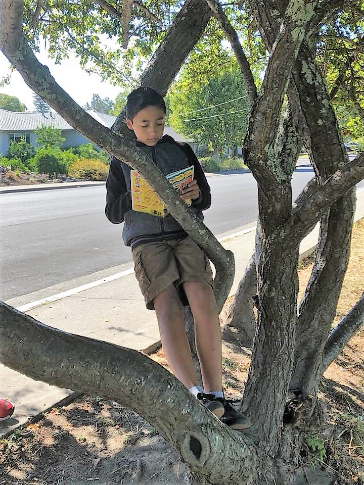 Student reading in tree