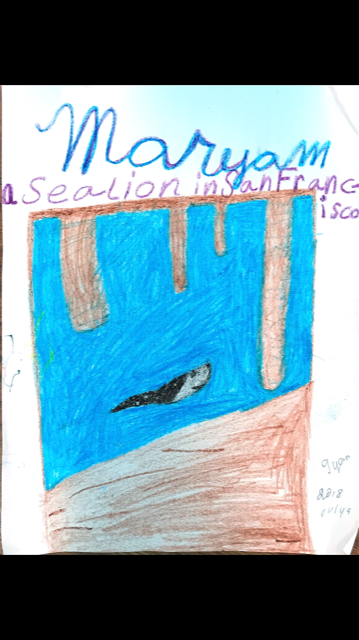 Maryam's Sea Lion