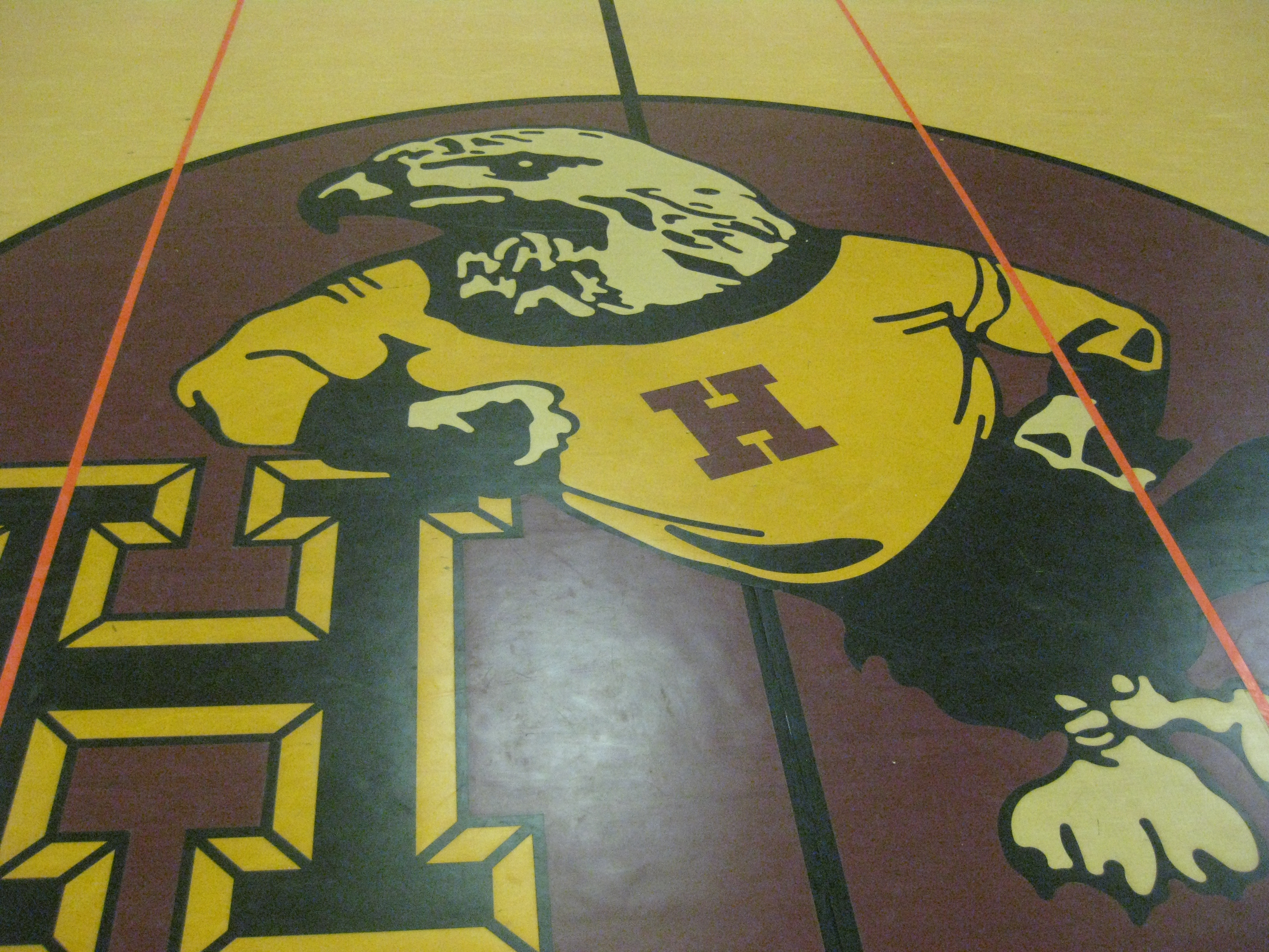 Hoover Hawks logo on gymnasium floor
