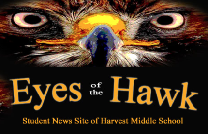eyes of the hawk