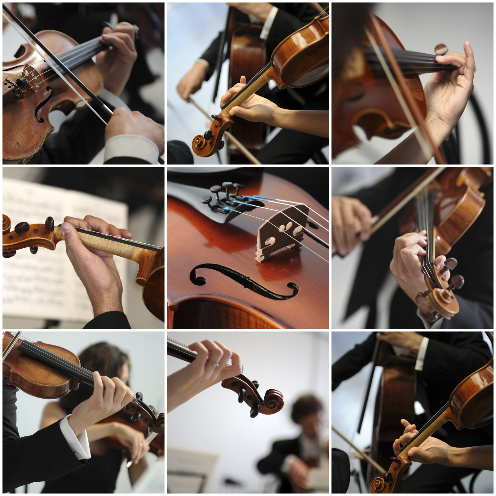 String Instrument Collage
