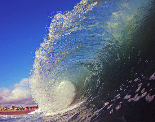 Summer at the Wedge