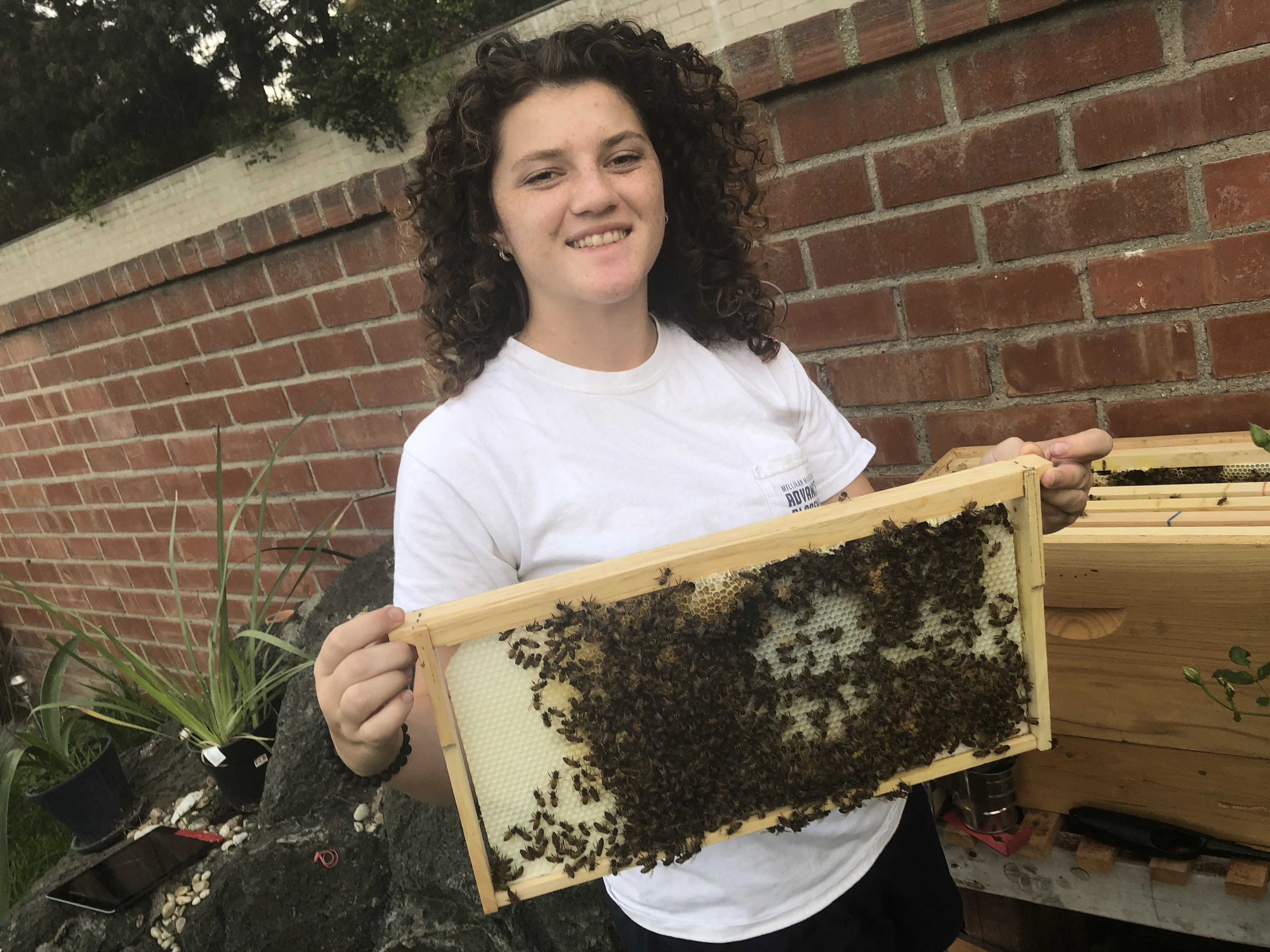 Courtney Campuzano, Bee-Keeper