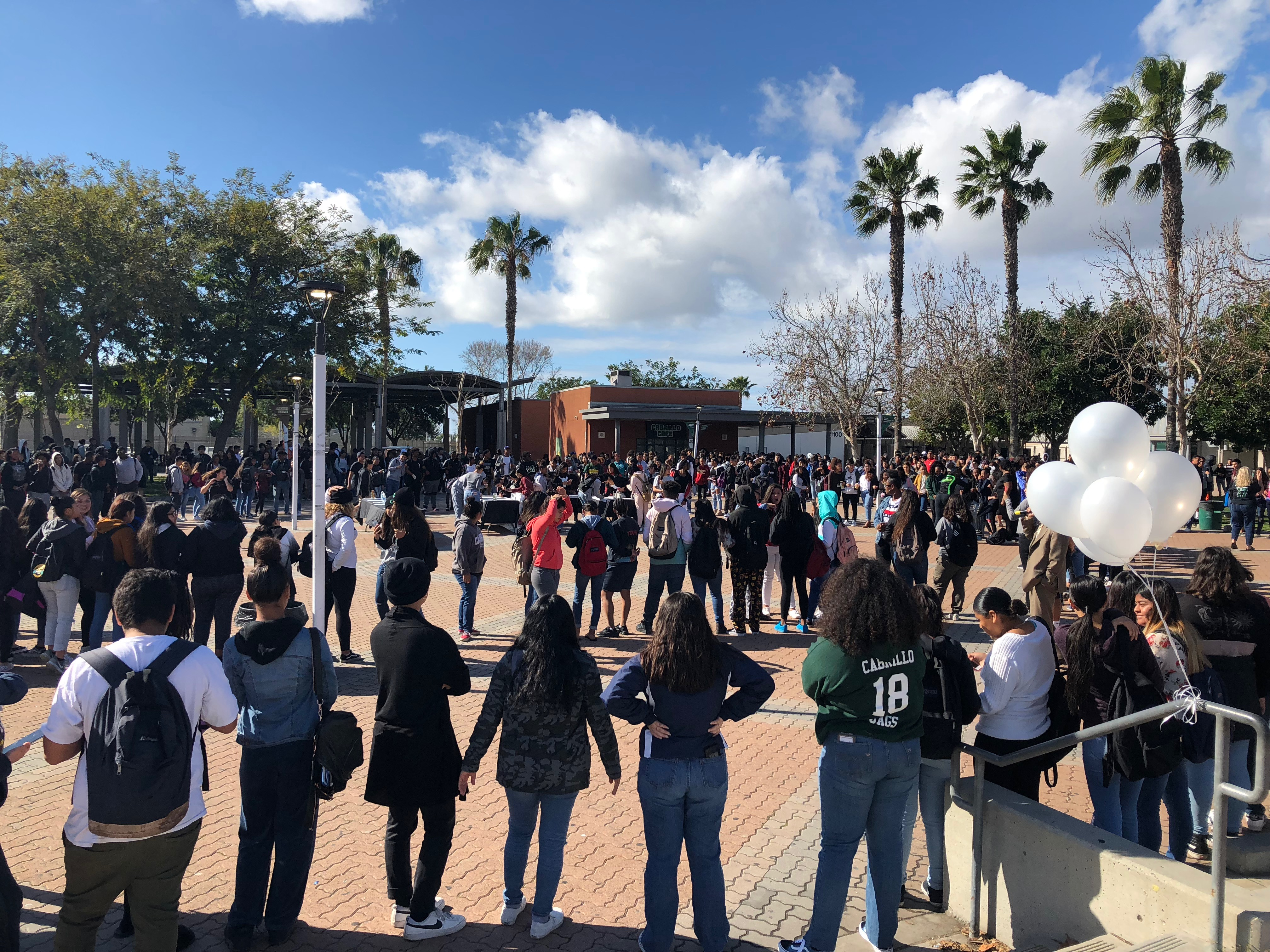 Peaceful Protest Against Gun Violence