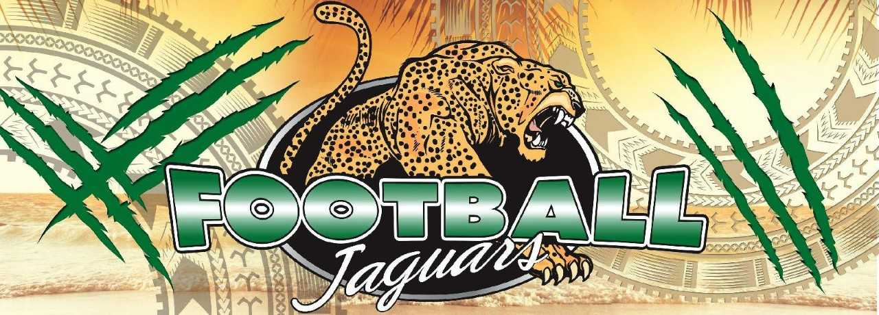 Football Jaguar Image