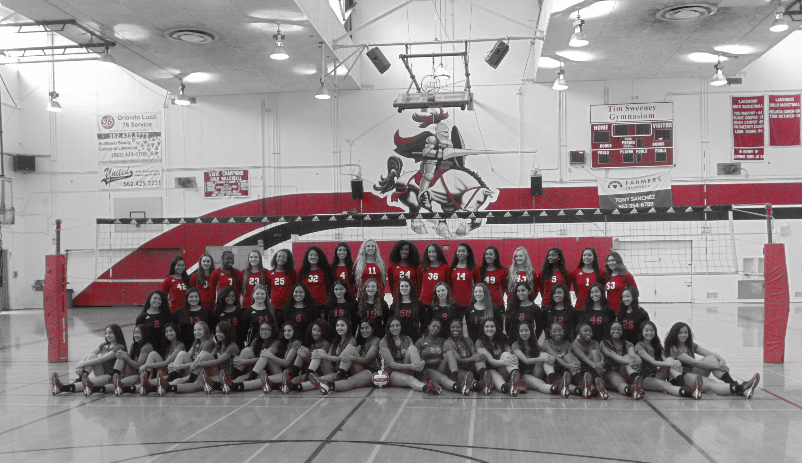 Lakewood Girls Volleyball 2016