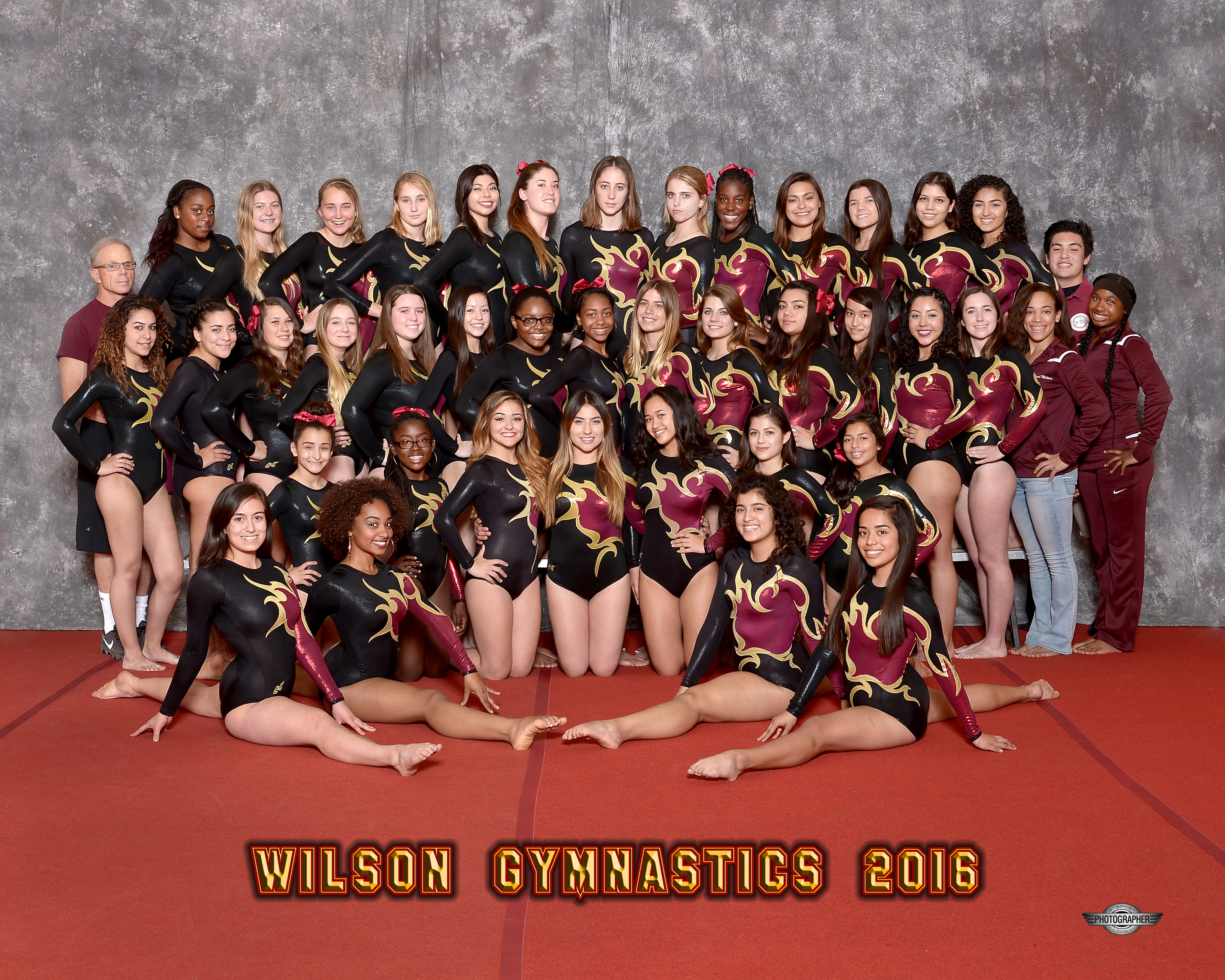 2015-16 Girls Gymnastics