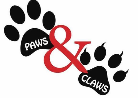 Paws and Claws Photo