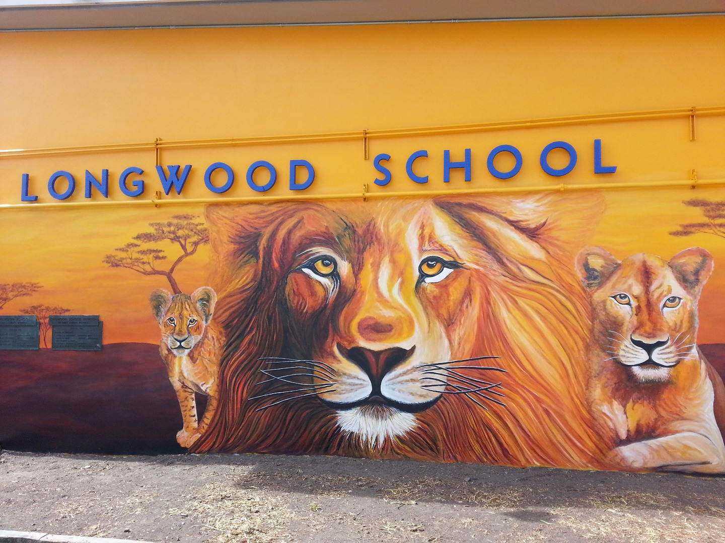 Mural art: Lions, school entrance, Longwood School