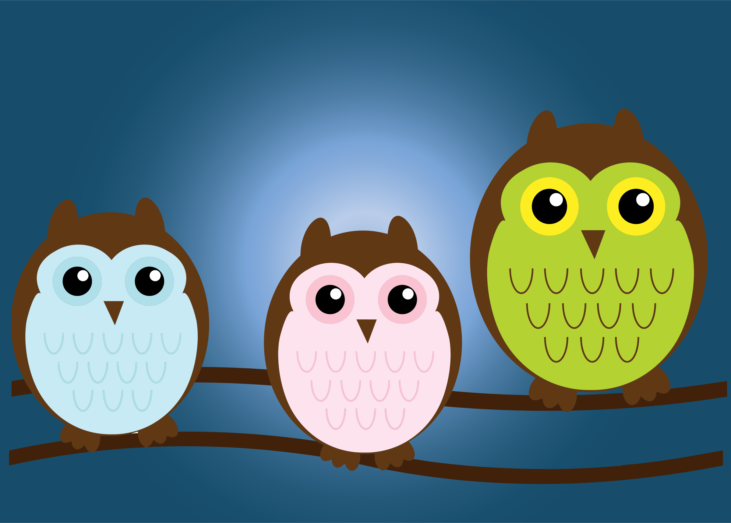 3 owls.png