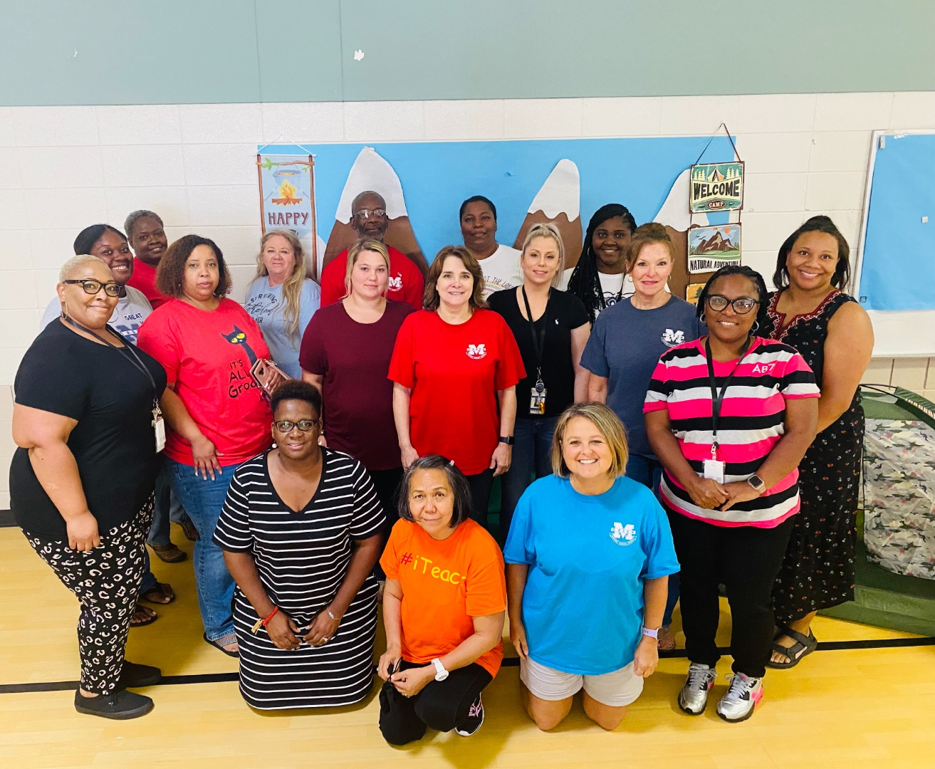 paraprofessionals as a group