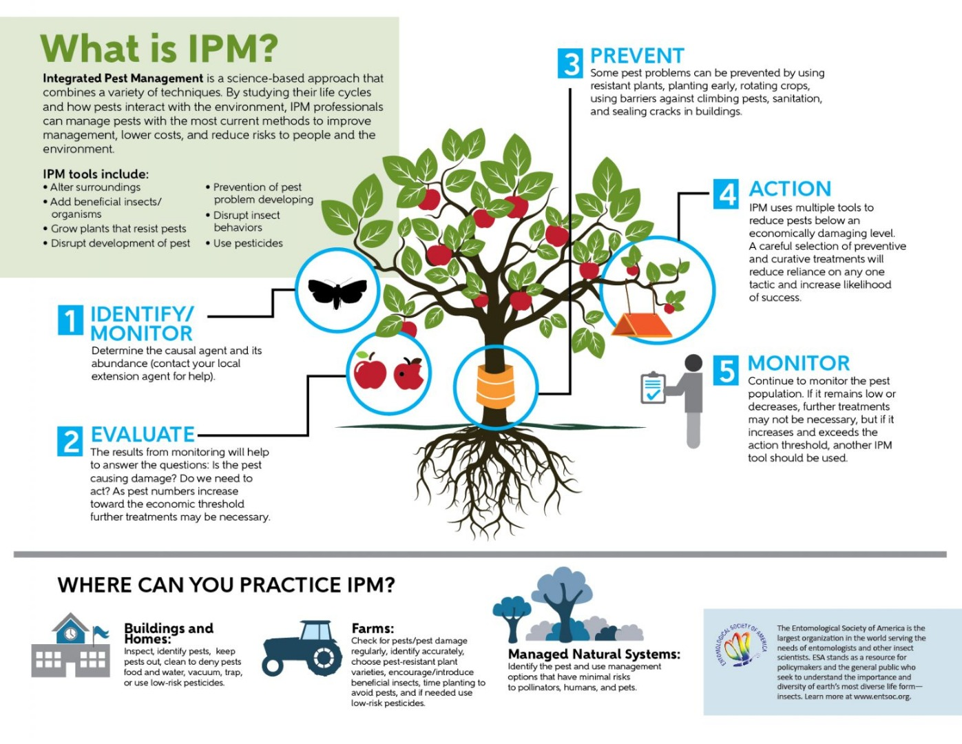 Infographic - What is IPM?