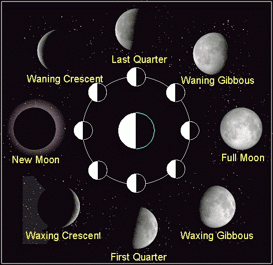 Have you looked at the moon lately?