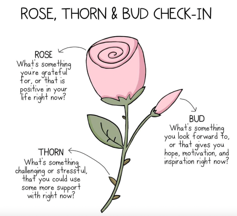 Rose, Thorn & Bud Check-In