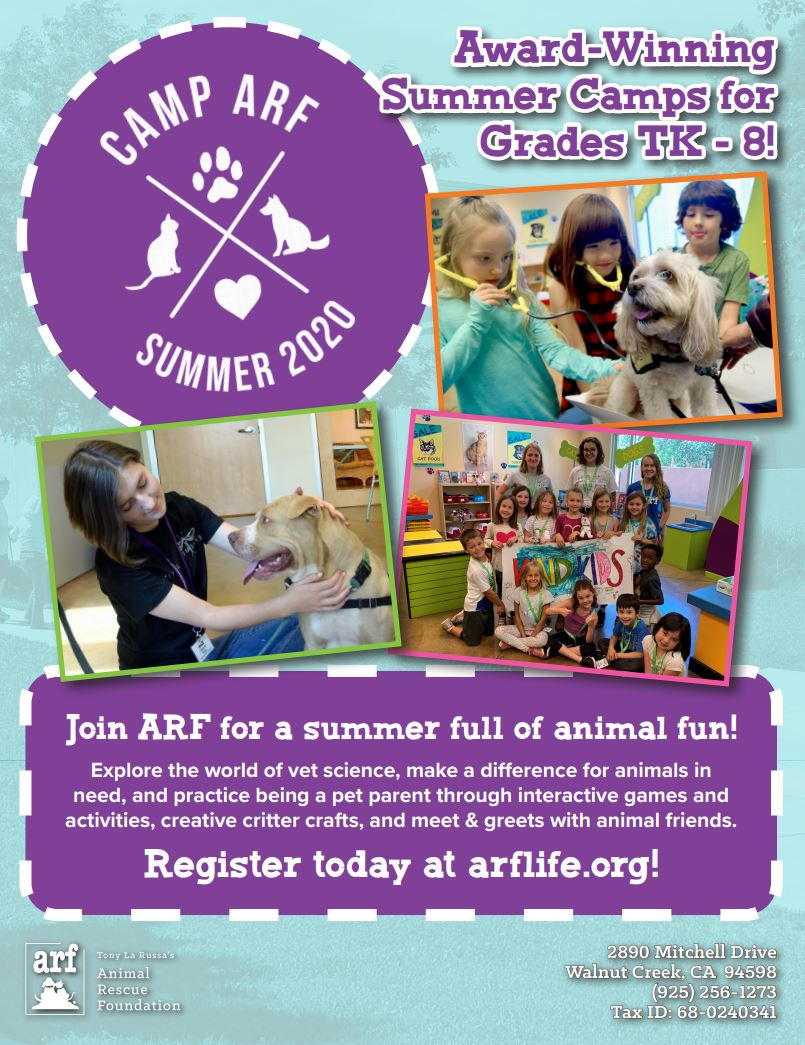 ARF Summer Program Information
