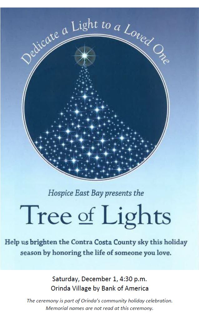 Tree of Lights Announcement