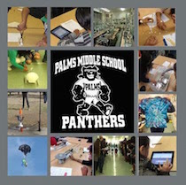 Palms lab collage