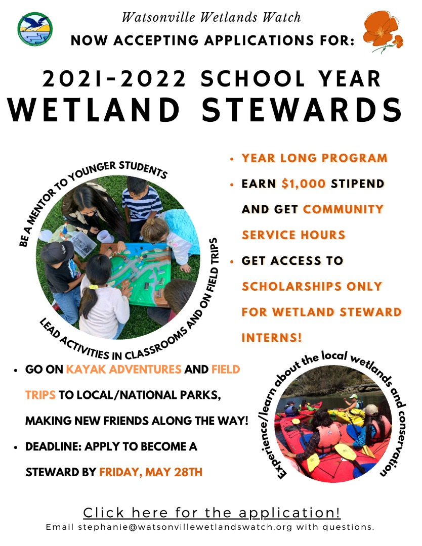 Wetland Stewards