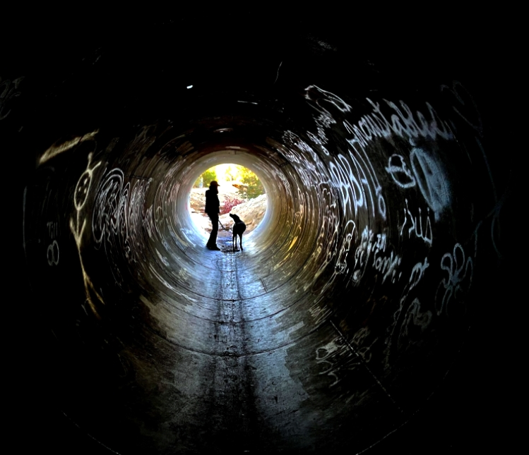 Student photo of a man and a dog at the end of a tunnel.