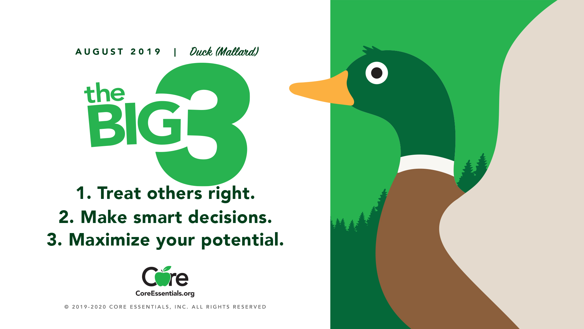 August Core Value-Mallard