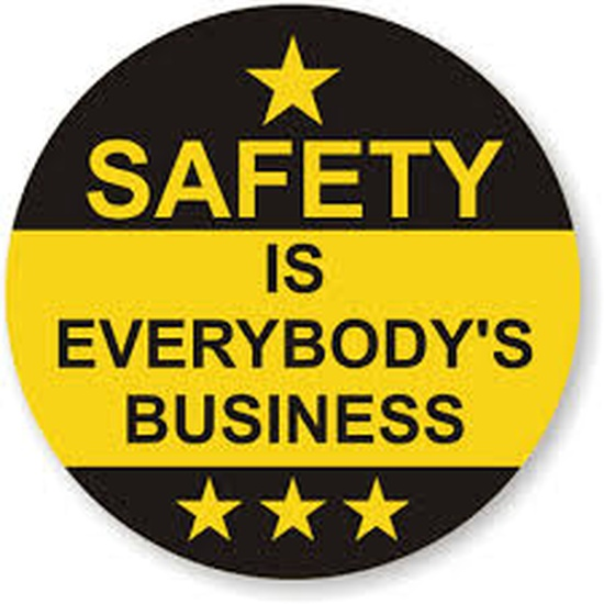 Safety is everyones business logo